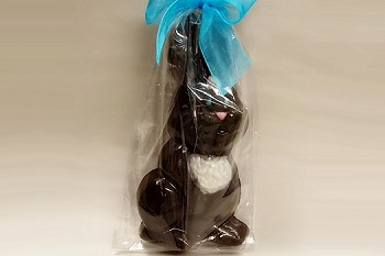 Chocolate Bunny with White Chest