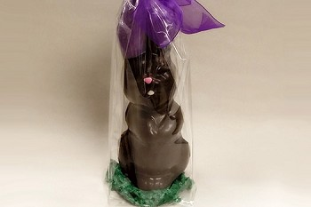 Solid Chocolate Bunny Standing